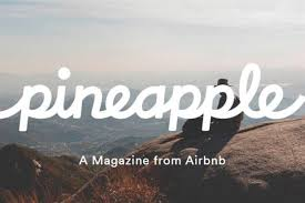 not selling airbnb but travel